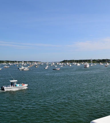 Edgartown Harbor view from Memorial Wharf, downtown Edgartown, M.V.