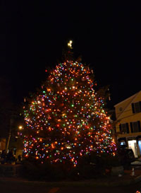 Rockport Christmas Tree, Dock Sq., Rockport, Mass.
